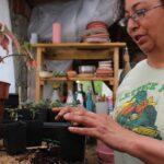 Many cultivate rural roots despite racial aggressions