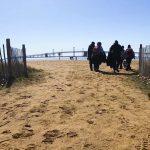 Cool 'healing waters' wash away pandemic anxieties